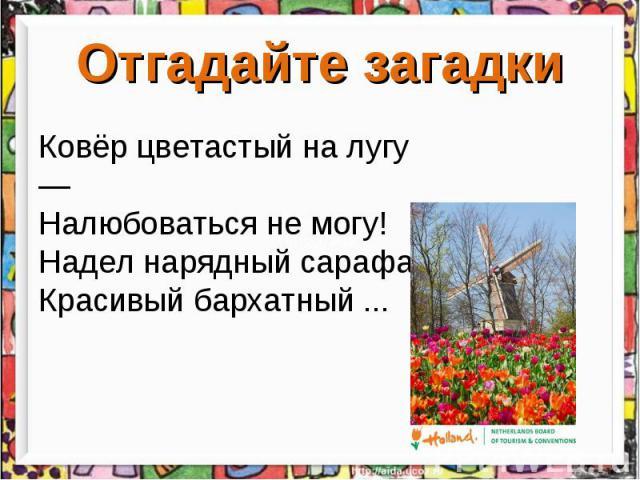 Отгадайте загадкиКовёр цветастый на лугу — Налюбоваться не могу! Надел нарядный сарафан Красивый бархатный ...