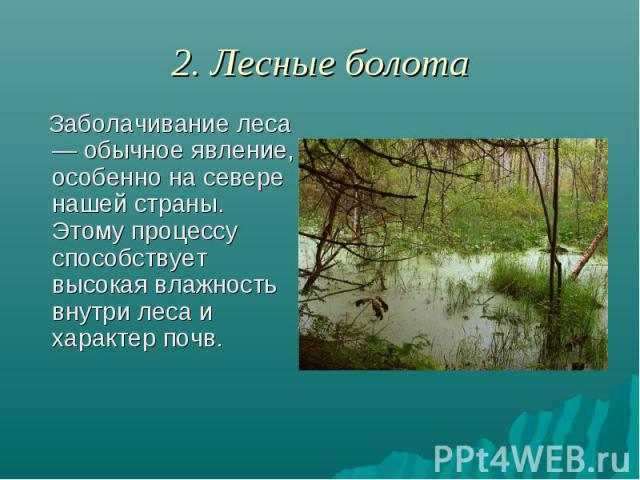 2. Лесные болота Заболачивание леса — обычное явление, особенно на севере нашей страны. Этому процессу способствует высокая влажность внутри леса и характер почв.
