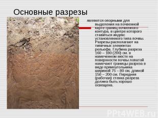 Основные разрезы являются опорными для выделения на почвенной карте границ почве