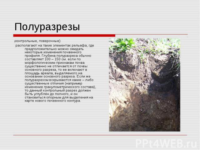 Полуразрезы(контрольные, поверочные) располагают на таких элементах рельефа, где предположительно можно ожидать некоторые изменения почвенного профиля. Глубина полуразреза обычно составляет 100 – 150 см. если по морфологическим признакам почва сущес…