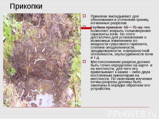 ПрикопкиПрикопки закладывают для обоснования и уточнения границ почвенных разрезов. Глубина прикопок 50 – 75 см, что позволяет вскрыть тольковерхние горизонты почв. Но этого достаточно для установления о возможных изменениях по мощности гумусового г…