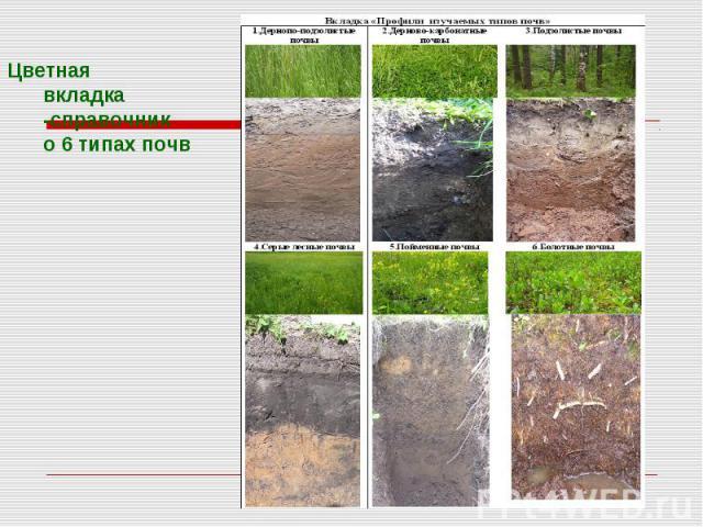 Цветная вкладка -справочник о 6 типах почв