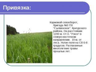 """Привязка: Кормовой севооборот, бригада №3 ПХ """"Сылвенское"""". Кунгурского района. Н"""
