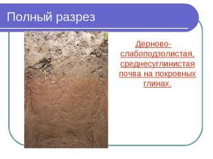 Полный разрез Дерново-слабоподзолистая, среднесуглинистая почва на покровных гли