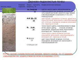Изучив строение и морфологические признаки, пришли к выводу, что это Дерново-сла