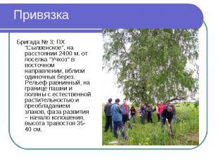 """Привязка Бригада № 3; ПХ """"Сылвенское"""", на расстоянии 2400 м. от поселка """"Учхоз"""""""