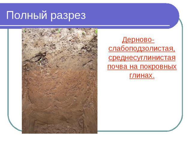 Полный разрез Дерново-слабоподзолистая, среднесуглинистая почва на покровных глинах.