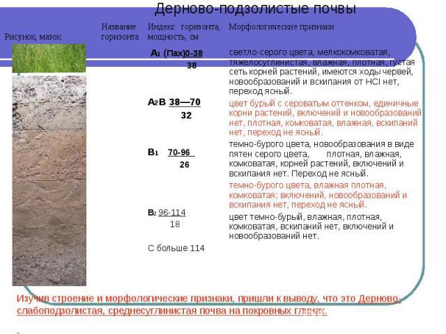 Изучив строение и морфологические признаки, пришли к выводу, что это Дерново-слабоподзолистая, среднесуглинистая почва на покровных глинах.