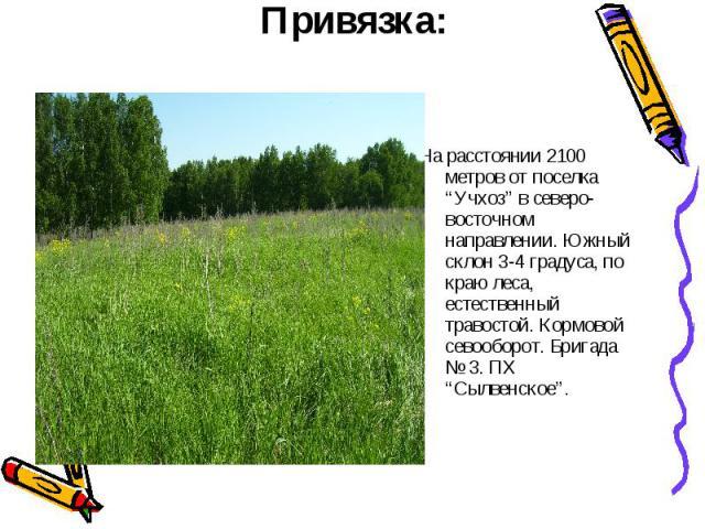 """Привязка: На расстоянии 2100 метров от поселка """"Учхоз"""" в северо-восточном направлении. Южный склон 3-4 градуса, по краю леса, естественный травостой. Кормовой севооборот. Бригада № 3. ПХ """"Сылвенское""""."""
