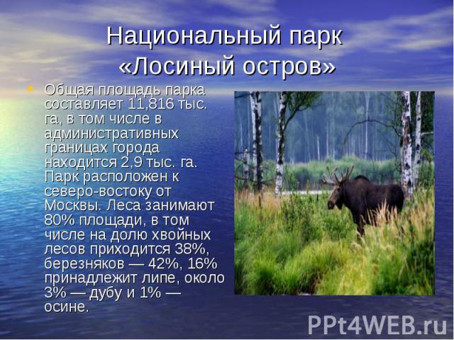 Национальный парк «Лосиный остров» Общая площадь парка составляет 11,816 тыс. га, в том числе в административных границах города находится 2,9 тыс. га. Парк расположен к северо-востоку от Москвы. Леса занимают 80% площади, в том числе на долю хвойны…