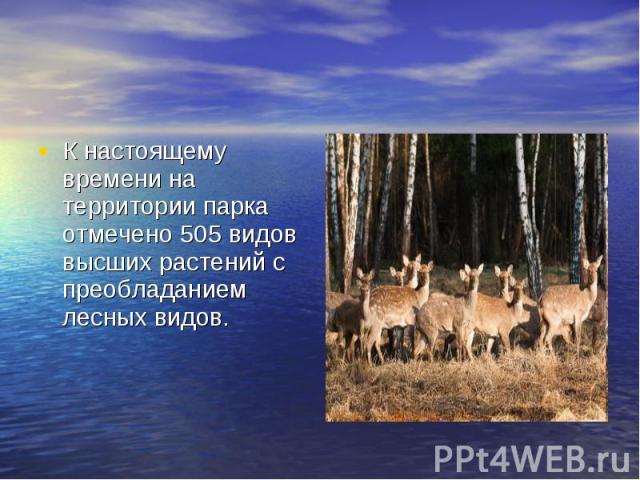 К настоящему времени на территории парка отмечено 505 видов высших растений с преобладанием лесных видов.