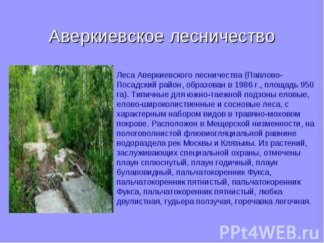 Аверкиевское лесничество Леса Аверкиевского лесничества (Павлово-Посадский район, образован в 1986 г., площадь 950 га). Типичные для южно-таежной подзоны еловые, елово-широколиственные и сосновые леса, с характерным набором видов в травяно-моховом п…