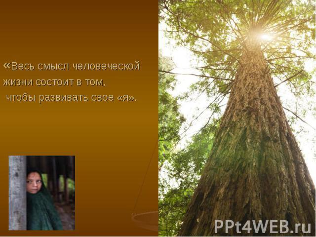 Т. Карлейль «Весь смысл человеческой жизни состоит в том, чтобы развивать свое «я».