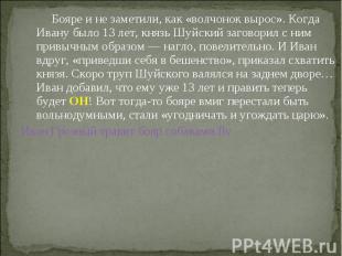 Бояре и не заметили, как «волчонок вырос». Когда Ивану было 13 лет, князь Шуйски