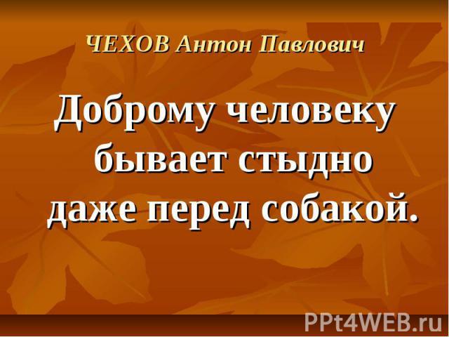 ЧЕХОВ Антон Павлович Доброму человеку бывает стыдно даже перед собакой.