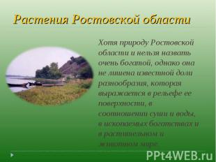 Растения Ростовской области Хотя природу Ростовской области и нельзя назвать оче