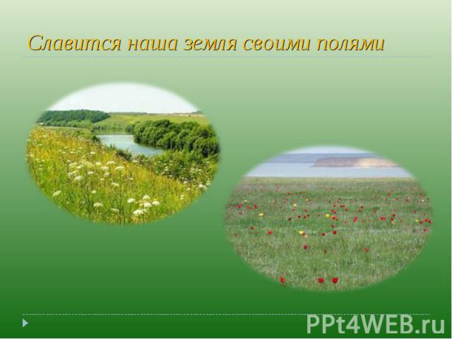 Славится наша земля своими полями