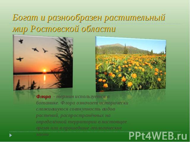 Богат и разнообразен растительный мир Ростовской области Флора - термин используется в ботанике. Флора означает исторически сложившуюся совокупность видов растений, распространённых на определённой территории в настоящее время или в прошедшие геоло…