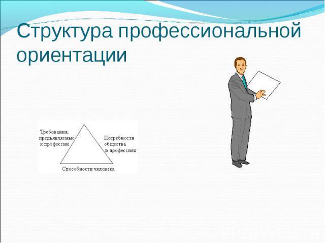 Структура профессиональной ориентации