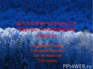 Достопримечательности природы Ленинградской области Надежкин Семен Савченко Миха