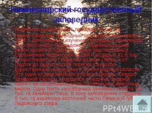 Нижнесвирский государственный заповедник Лодейнопольский район, площадь 41 тыс.