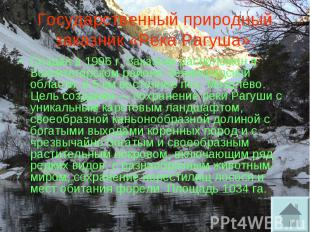 Государственный природный заказник «Река Рагуша». Создан в 1996 г. Заказник расп