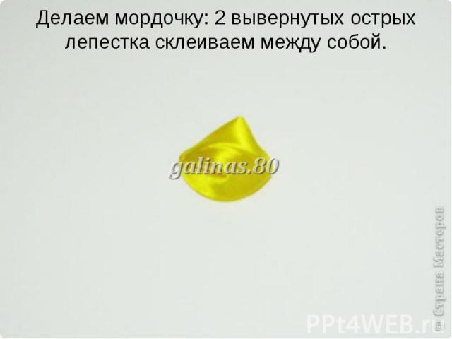 Делаем мордочку: 2 вывернутых острых лепестка склеиваем между собой.