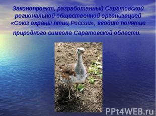 Законопроект, разработанный Саратовской региональной общественной организацией «