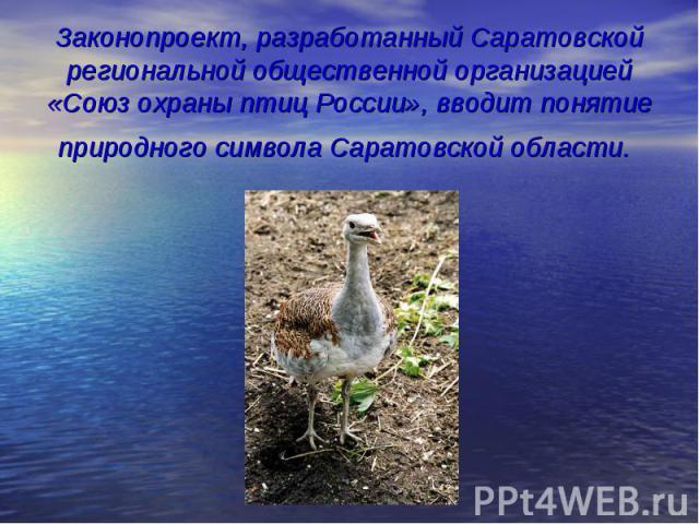 Законопроект, разработанный Саратовской региональной общественной организацией «Союз охраны птиц России», вводит понятие природного символа Саратовской области.