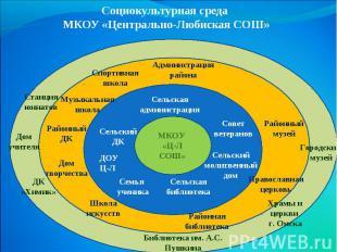 Социокультурная среда МКОУ «Центрально-Любиская СОШ»