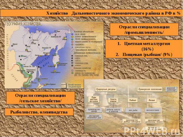 Хозяйство Дальневосточного экономического района в РФ в % Отрасли специализации /промышленность/ Цветная металлургия (16%) Пищевая /рыбная/ (9%) Отрасли специализации /сельское хозяйство/ Рыболовство, оленеводства