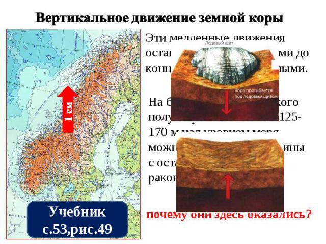 Вертикальное движение земной коры Эти медленные движения оставались незамеченными до конца XVIII в. даже учёными. На берегах Скандинавского полуострова на высоте 125-170 м над уровнем моря можно видеть пески и глины с остатками морских раковин. Объя…