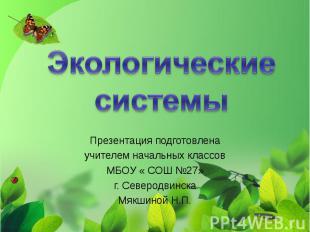 Экологические системы Презентация подготовлена учителем начальных классов МБОУ «