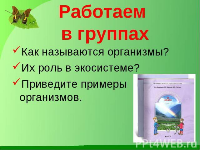 Работаем в группах Как называются организмы? Их роль в экосистеме? Приведите примеры организмов.