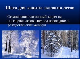 Шаги для защиты экологии лесов Ограничения или полный запрет на посещение лесов