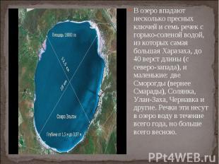 В озеро впадают несколько пресных ключей и семь речек с горько-соленой водой, из