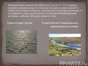 Минерализация воды рек колеблется от 6 до 26 г/л. Это хлоридно-магниево-натриева