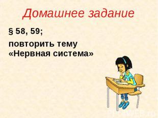 Домашнее задание § 58, 59; повторить тему «Нервная система»