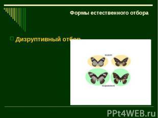 Формы естественного отбора Дизруптивный отбор