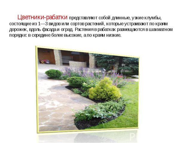 Цветники-рабатки представляют собой длинные, узкие клумбы, состоящие из 1—3 видов или сортов растений, которые устраивают по краям дорожек, вдоль фасада и оград. Растения в рабатках размещаются в шахматном порядке: в середине более высокие, а по к…