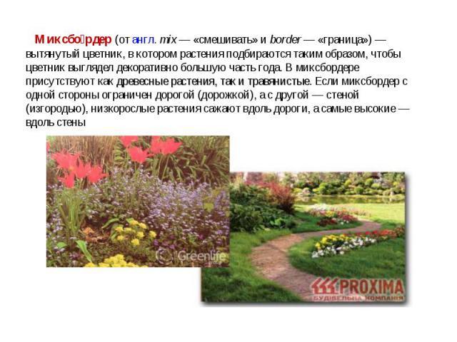 Миксбо рдер (от англ.mix— «смешивать» и border— «граница»)— вытянутый цветник, в котором растения подбираются таким образом, чтобы цветник выглядел декоративно большую часть года. В миксбордере присутствуют как древесные растения, так и травянис…