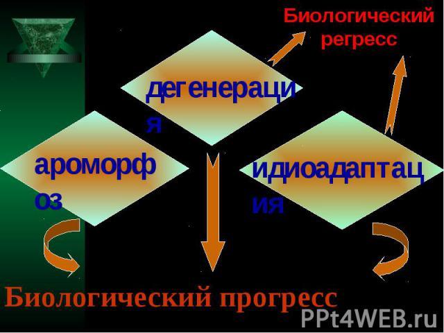 Биологический регресс Биологический прогресс