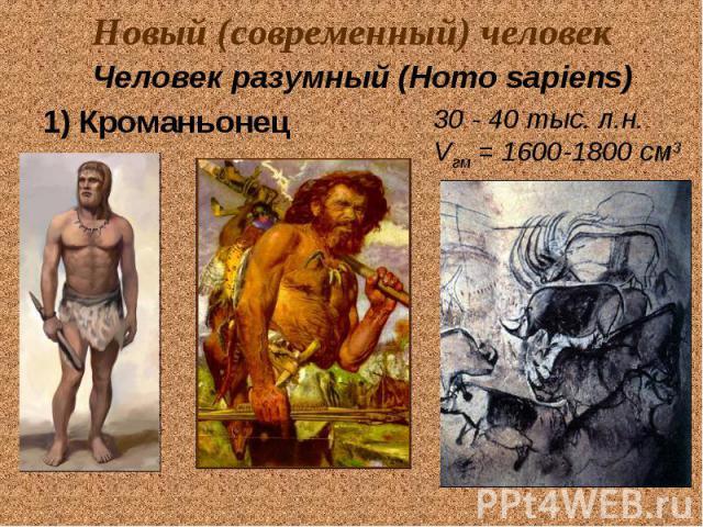 Новый (современный) человек Человек разумный (Homo sapiens) 1) Кроманьонец 30 - 40 тыс. л.н. Vгм = 1600-1800 см3