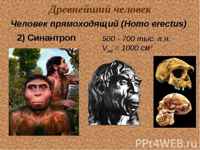 Древнейший человек Человек прямоходящий (Homo erectus) 2) Синантроп 500 - 700 тыс. л.н. Vгм = 1000 см3