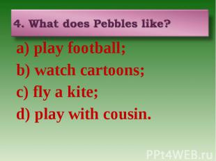 4. What does Pebbles like? a) play football; b) watch cartoons; c) fly a kite; d
