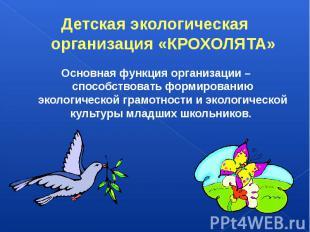 Детская экологическая организация «КРОХОЛЯТА»Основная функция организации – спос