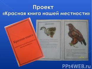 Проект «Красная книга нашей местности»