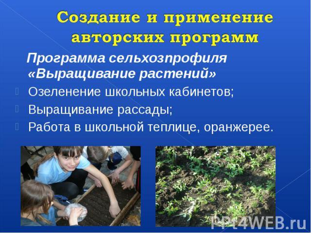 Создание и применение авторских программ Программа сельхозпрофиля «Выращивание растений» Озеленение школьных кабинетов; Выращивание рассады; Работа в школьной теплице, оранжерее.