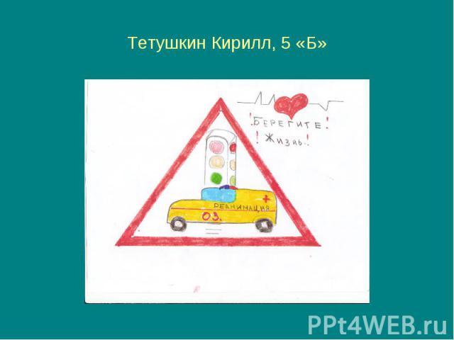 Тетушкин Кирилл, 5 «Б»