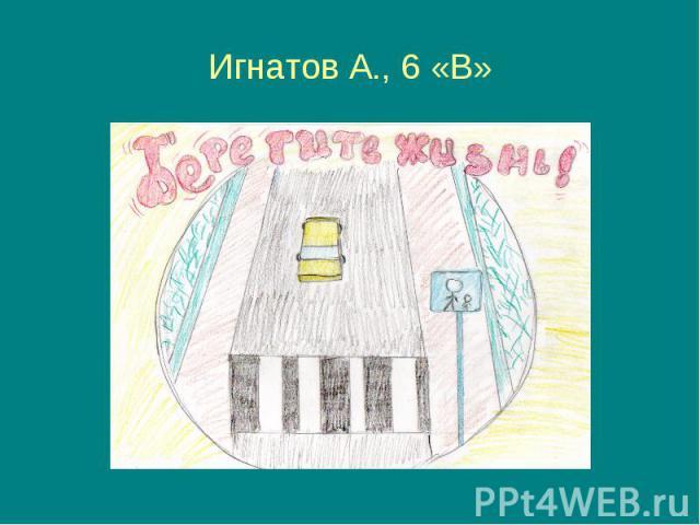 Игнатов А., 6 «В»